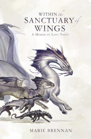 cover art for Within the Sanctuary of Wings, cropped to book proportions
