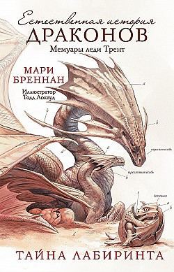 Russian cover for IN THE LABYRINTH OF DRAKES